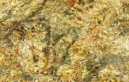 Pyrite background Royalty Free Stock Photo