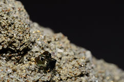 Pyrite cubes detailed Royalty Free Stock Photos