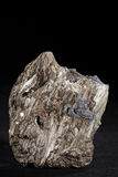 Pyrite , Galena  and tremolite Stock Photography