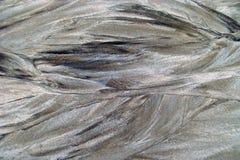 Pyrites Photos libres de droits