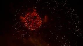 Pyrotechnic Vuurwerk van de nacht het Gouden Regen op Zwarte stock footage