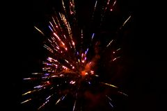 Pyrotechnics / fireworks in a dark night sky . Royalty Free Stock Photo