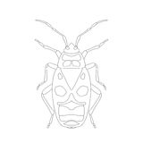 Pyrrhocoris apterus. beetle. Bug-soldier. Sketch of beetle. beetle  on white background. beetle Design for coloring book. Royalty Free Stock Photo