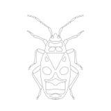 Pyrrhocoris apterus. beetle. Bug-soldier. Sketch of beetle. beetle  on white background. beetle Design for coloring book. Royalty Free Stock Photo