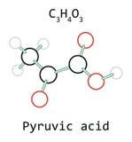 Pyruvic syra C3H4O3 för molekyl Arkivfoton