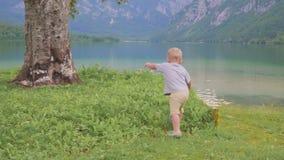 Pys 2 år i vattnet av skogbergsjön tillbaka sikt stock video
