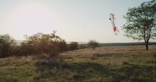 Pys med hans pappa som spelar med en sats på solig dag på naturen 4k sköt på röd epos stock video