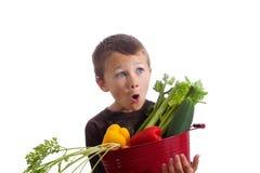 Pys med korgen av nya grönsaker royaltyfria bilder