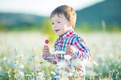 Pys på fältet av lyckligt gå för blommapodier royaltyfria foton