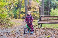 Pys som har gyckel på cyklar i selektiv fokus för höstskog Royaltyfri Fotografi