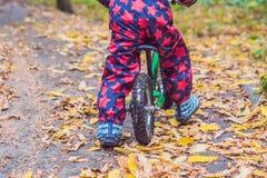 Pys som har gyckel på cyklar i selektiv fokus för höstskog Royaltyfri Foto