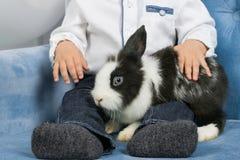 Pys som kramar en päls- kanin som sitter i fåtöljen Royaltyfri Bild