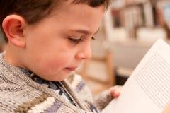 Pys som läser en bok Royaltyfri Foto