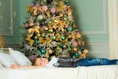 Pys som ligger på sängen bredvid granen Jul royaltyfri foto