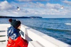 Pys som ser havet på vintern från pir royaltyfri foto