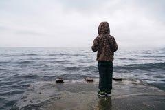 Pys som ser havet på vintern från pir fotografering för bildbyråer