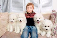 Pys tre år gammalt spela med vita valpar Arkivfoton