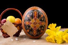 Pysanka, huevos pintados en busket y narcisos de la primavera Huevos de Pascua en fondo negro Concepto del día de fiesta, el gret Fotografía de archivo libre de regalías