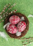 Pysanky, decorated Easter eggs in the nest. Pussy willow branches and white feathers on green background, wide format, top view, copy space Royalty Free Stock Images