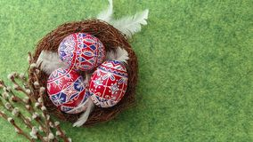 Pysanky, decorated Easter eggs in the nest. Pysanky in the nest, pussy willow and feathers on green background. Easter eggs, painted in red, blue and white Royalty Free Stock Photo