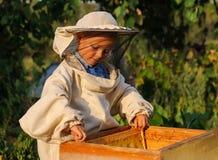 Pysbeekeeperen arbetar på en bikupa på bikupan Arkivfoto