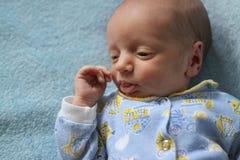 Pysen behandla som ett barn iklätt den blåa tröjan Arkivbilder
