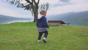 Pysen går nära bergsjön Köra och stoja i natur långsam rörelse stock video