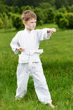 Pysen gör karateövningar Royaltyfri Foto