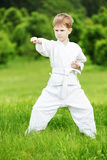 Pysen gör karate övar Arkivbild