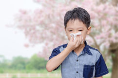 Pysen har den rinnande näsan från allergier arkivfoto