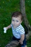 Pysen med en leksak i händer sitter på ett träd Fotografering för Bildbyråer