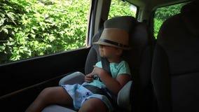 Pysen ser till och med bilen för det öppna fönstret arkivfilmer