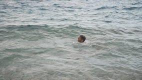 Pysen simmar joyfully i Adriatiskt havet Vinkar i havet croatia arkivfilmer