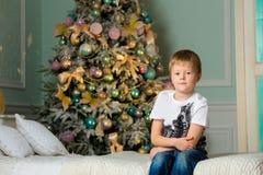 Pysen sitter på sängen bredvid granen Jul royaltyfri foto