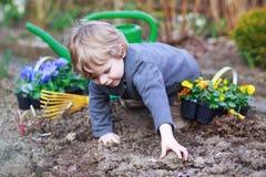 Pysen som arbeta i trädgården och planterar, blommar i trädgård Royaltyfri Foto