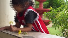 Pysen tycker om att spela blommor bara på konkreta räcke arkivfilmer