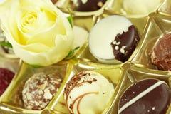 pyszne czekoladowe pralines Zdjęcia Royalty Free