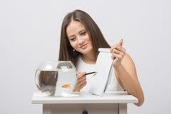 Pyta goldfish pragnienie bookmark Obrazy Stock
