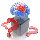 Pytania dla inteligencja mózg Zdjęcia Royalty Free