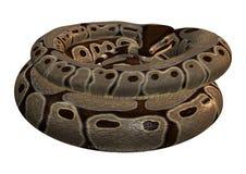 python de boule du rendu 3D sur le blanc Photographie stock libre de droits