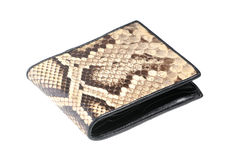 Python leather wallet Royalty Free Stock Photography