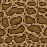 Pythonschlange-Muster Lizenzfreie Stockbilder