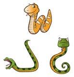 Pythonschlange schlängelt sich Ansammlung vektor abbildung