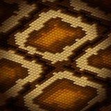 Pytonu węża skóry brązu tło wektor Obrazy Royalty Free