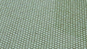 Pływackiego basenu tła tekstura zdjęcie wideo