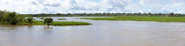 Pływający statkiem na rzece amazonkę w lesie tropikalnym, Brazylia Obraz Royalty Free