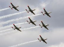 The PZL 130 Orlik Royalty Free Stock Images