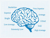 Q.I., quociente de inteligência, cérebro, mentalidade Fotografia de Stock Royalty Free