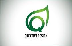 Q Leaf Logo Letter Design with Green Leaf Outline Royalty Free Stock Image