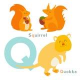 Q letter animals set. English alphabet. Vector illustration Stock Photo